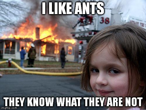 i_like_ants.jpg
